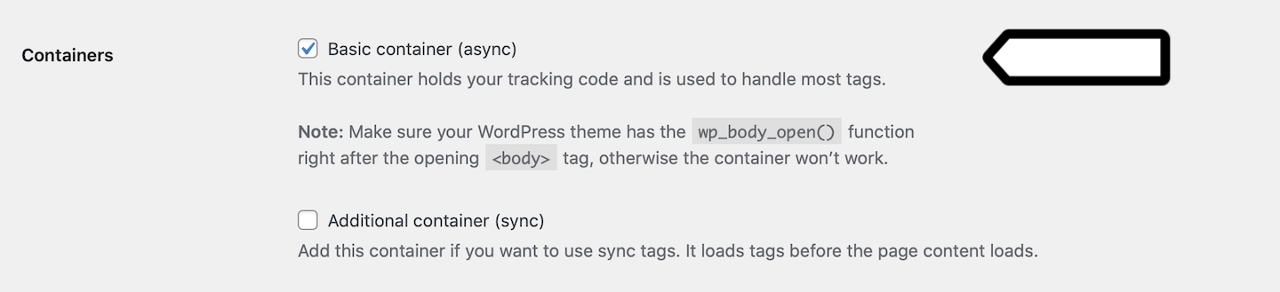 Basic container (on) in the WordPress plugin